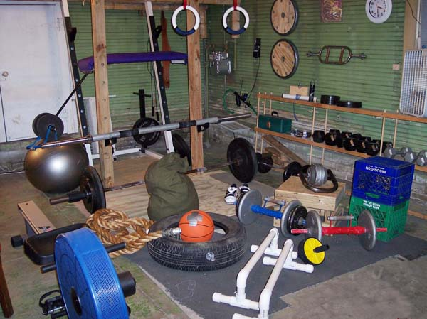 Garage gym rogue rogue folding rig and bumper weights the garage gym
