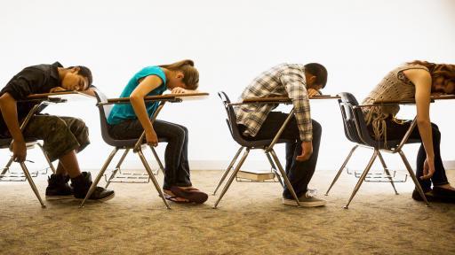 Sleepy Students Don't Even Lift